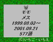 momo-2-credit.jpg
